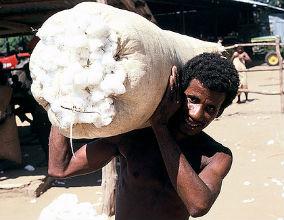 Wysokie ceny bawełny spowodowały, że ceny ubrań wzrosły do poziomu nienotowanego od dekady. (CC BY-NC-ND World Bank Photo Collection)