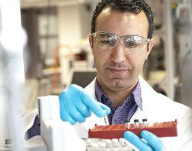 Proszę szukać innowatorów w branży biotechnologicznej - radzi Alex Tabarrok (CC BY-NC-ND Shell)