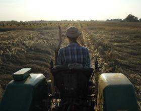Nie chcesz dłużej pracować na emeryturę, kup hektar ziemi