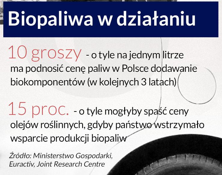 UE ogranicza wsparcie dla biopaliw, Polska nie