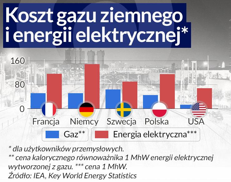 Koszt-gazu-ziemnego- (2)