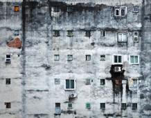 Nierówności poprawiają byt wszystkim