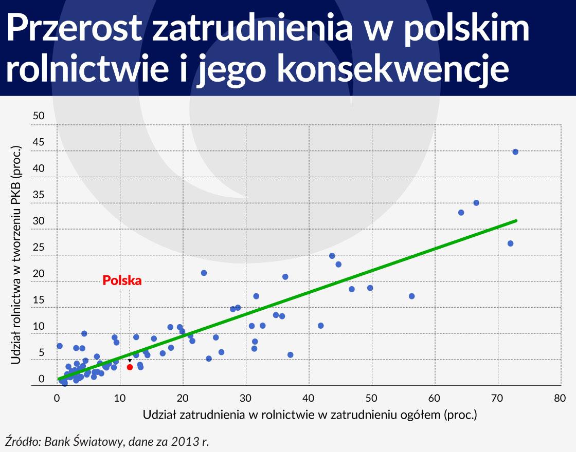 Przerost zatrudnienia w polskim rolnictwie oraz jego negatywne konsekwencje