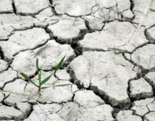 Innowacyjny biznes to oręż w walce ze zmianami klimatu