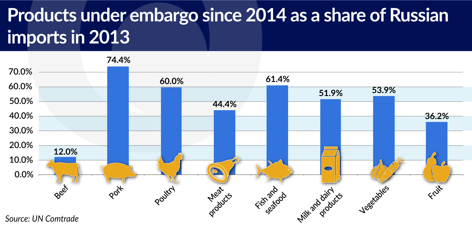 products as share of Russian imports 2013_jamnik