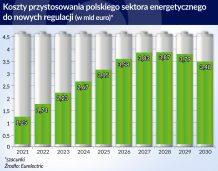 Modernizacja polskiej energetyki pochłonie miliardy
