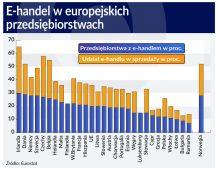 Polskie firmy nie wykorzystują w pełni możliwości internetu