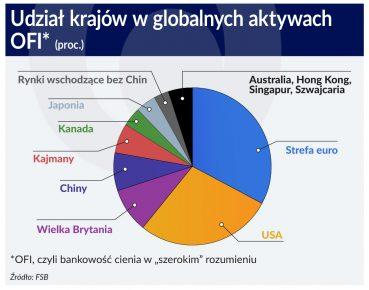 udzial krajow w globalnych aktywach OFI