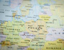 Najlepsze polskie specjalności eksportowe