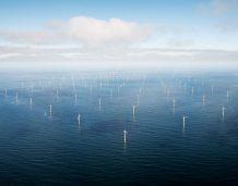 Francja zamierza renegocjować budowę farm wiatrowych