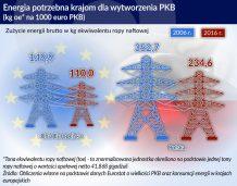 Wzrost gospodarczy z nadmiernym wkładem energii