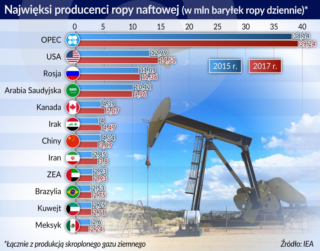 W tym roku można się spodziewać tylko umiarkowanego wzrostu cen ropy
