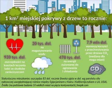Drzewa_inwestycje miejskie_oszczednosci_otwarcie