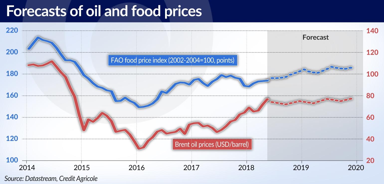 OLIPRA Wyższa cena ropy zatrzyma spadek cen żywności na świecie jamnik