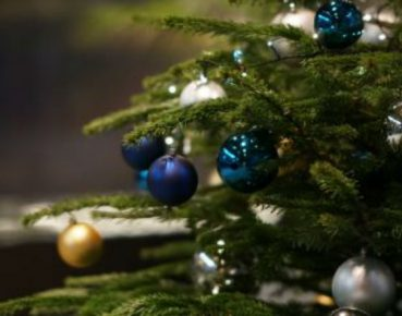 083219523-christmas-tree-decorated-baubl-db