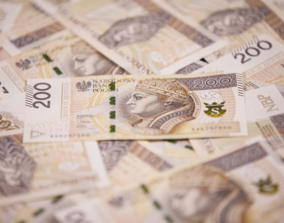 Zloty_banknot_Narodowy_Bank_Polski_CC BY-ND