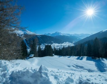Davos 2021 – dzień drugi