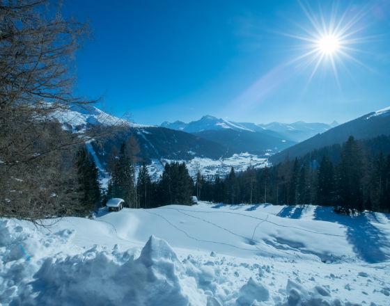 Davos: Potrzeba współpracy międzynarodowej