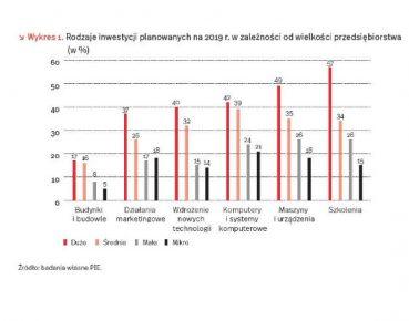 wielkosc firmy a planowane inwestycje wg PIE