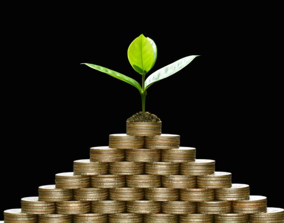 WOS_ZMNIEJSZONY_photodune-21039066--business-saving-growth-economic-concept--xl