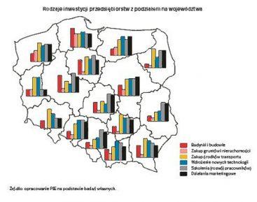 W co inwestują polskie przedsiębiorstwa?