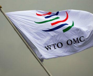 Członkostwo w WTO Ukrainie bardziej szkodzi czy pomaga?