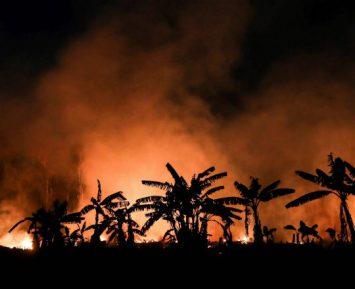 Rolnictwo czeka klimatyczna rewolucja