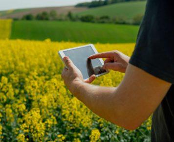 Stodolak_Rozmowa o rolnictwie_photodune_envato