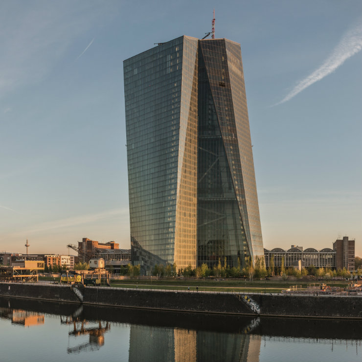 Successes and failures of the European Central Bank