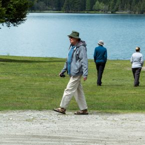 The burdens of population aging and possible solutions