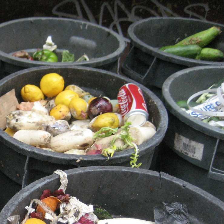 Food waste in Poland high compared to other EU countries