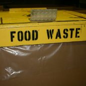 Is food waste an economic waste?