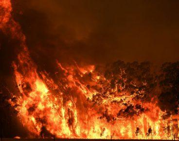 Kwaśnicki_Australijskie pożary