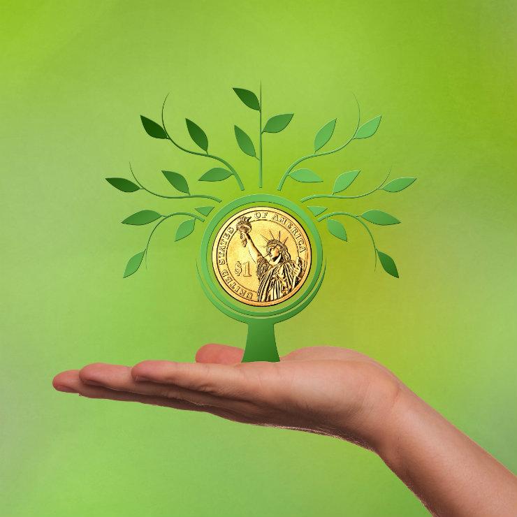 The green finance revolution