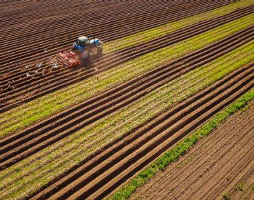 Koncentracja w polskim rolnictwie przebiega zbyt wolno