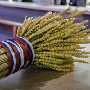 Russia wheat kwadrat