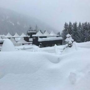 Davos 2021 – dzień trzeci