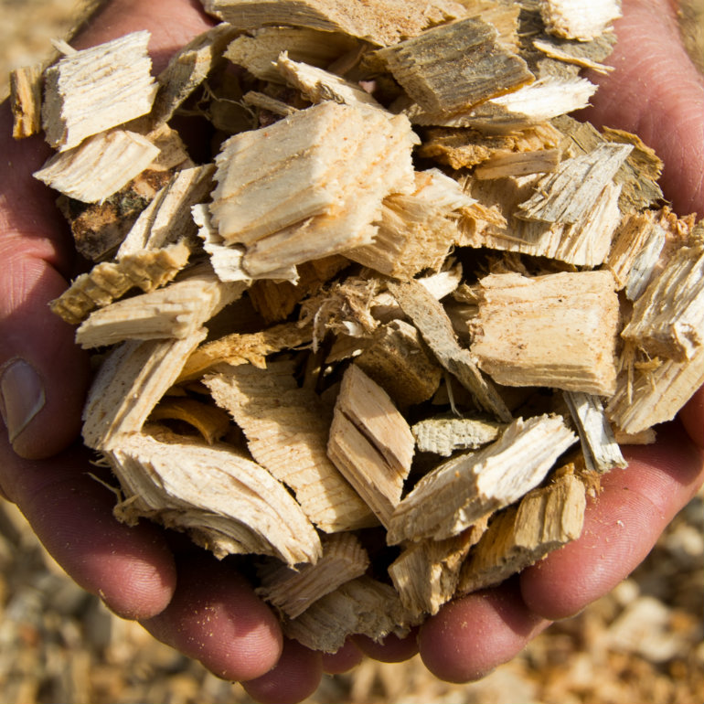 German-Lithuanian Group looks to expand into biomass