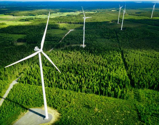 """""""Zielony ład"""" – biurokratyczne reguły walki ze zmianami klimatycznymi"""