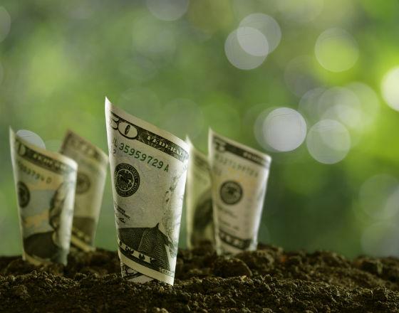 VOX_W poszukiwaniu kombinacji polity fiskalnej i pienieznej_2_photodune_envato