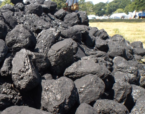 Poland backs EU carbon tax plans
