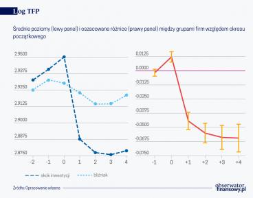 Wpływ inwestycji przedsiębiorstw na ich wydajność