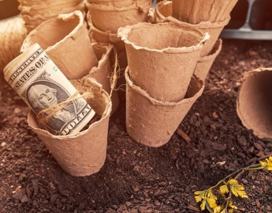 Klimat w polityce pieniężnej