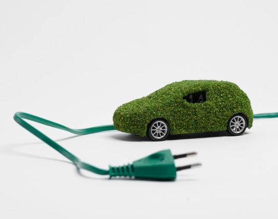 Elektryki odporne na kryzys