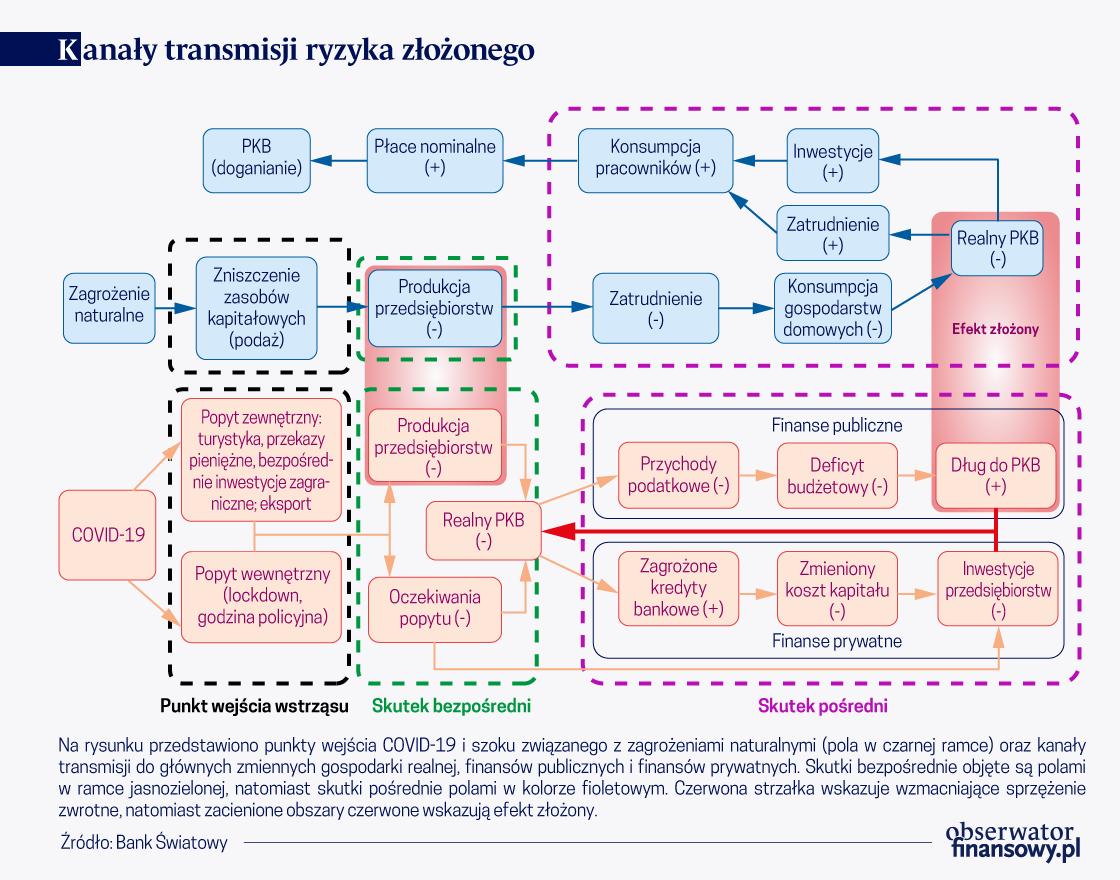 Zarządzanie ryzykiem finansowym: pandemia i klimat