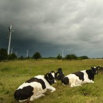 Not all hot air: Poland embarks on wind power auctioning system