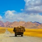 Ukraine joins the Silk Road