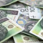Diminishing chances for the strengthening of the PLN