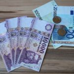 Hungary to hold off on Eurozone accession