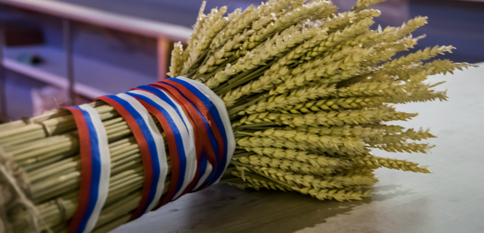 Despite sanctions Russian wheat export is breaking the
